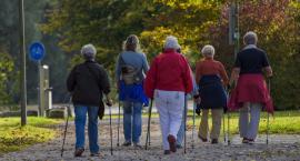Nordic walking na Młocinach